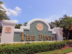 The-Pines